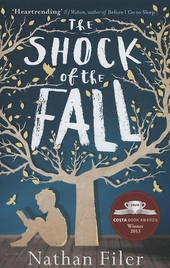 The shock of the fall