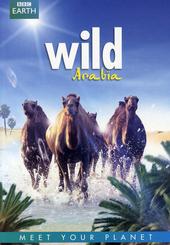 Wild Arabïa