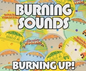 Burning up! : Roots reggae and rockers