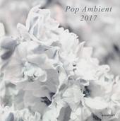 Pop ambient 2017