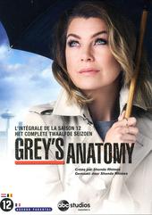 Grey's anatomy. Het complete twaalfde seizoen