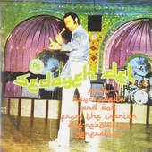 Sedayeh del : Funk psychedelia and pop from the Iranian pre-revolution generation
