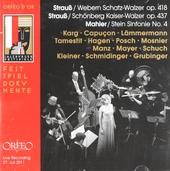 Mahler-Szenen 1