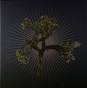 The Joshua tree : 30th anniversary collection