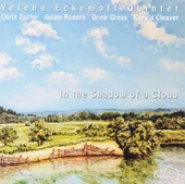 In the shadow of a cloud