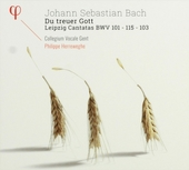Du treuer Gott : Leipzig cantatas BWV 101 - 115 - 103