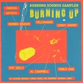 Burning up : Burning Sounds sampler