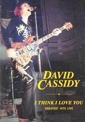I think I love you : Greatest hits live