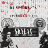Skylax house explosion
