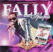 Fally : concert au Zenith