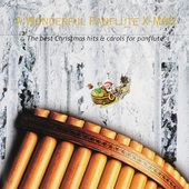 A wonderful panflute X-mas : The best Christmas hits & carols for panflute. vol.5