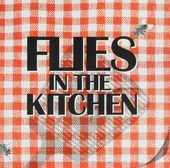 Flies In The Kitchen