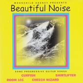 Beautiful noise : Some progressive guitar songs
