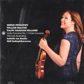 Violin concerto no.1