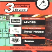3 labels styles