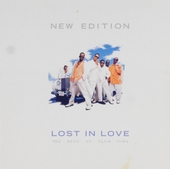 Lost in love : The best of slow jams