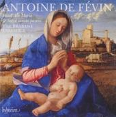 Missa Ave Maria & Missa Salve sancta parens