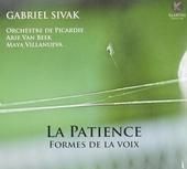La patience : Formes de la voix