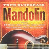 True bluegrass : Mandolin