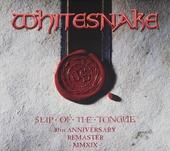 Slip of the tongue : 30th anniversary remaster 2019