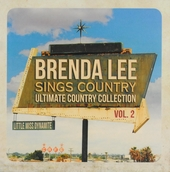 Sings country : Ultimate country collection. vol.2