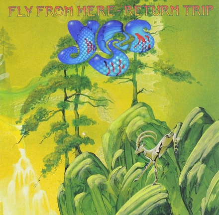 Fly from here : Return trip