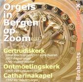 Brabants orgelrijkdom X : Orgels in Bergen op Zoom. vol.10