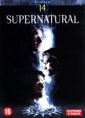 Supernatural. Seizoen 14
