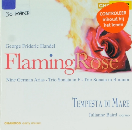 Flaming rose