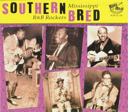 Southern bred. Vol. 5, Mississippi r&b rockers