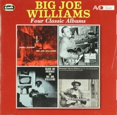 Piney woods blues ; Tough times ; Blues on Highway 49 ; Mississippi's Big Joe Williams and his nine string guitar