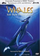 Whales : een duik onder water