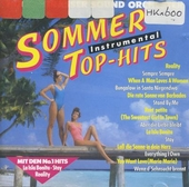 Sommer top hits instrumental