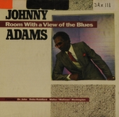 Room with a vieuw of the blues