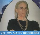 Blue berry hill