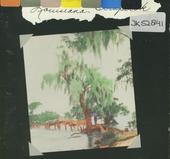 Louisiana Scrapbook