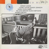 Living chicago blues. vol.4