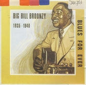 Big bill broonzy 1935 - 1940