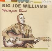 Watergate blues
