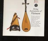Strings instruments of vietnam
