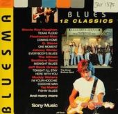 12 original hits: Bluesman