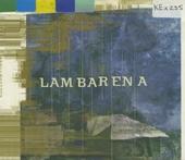 Lambarena : Bach to Africa