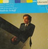 Schubert piano sonatas. Vol. 6
