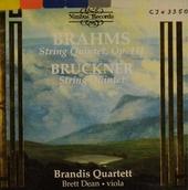 Strinq quintets