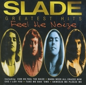 Feel the noise : greatest hits