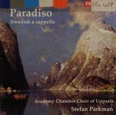 Paradiso. vol.2