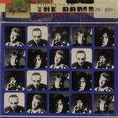 Marvellous : the best of The Damned