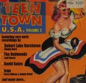 Teen town U.S.A.. vol.2