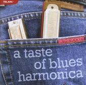 A taste of blues harmonica in the pocket