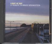 Light of day : a tribute to Bruce Springsteen